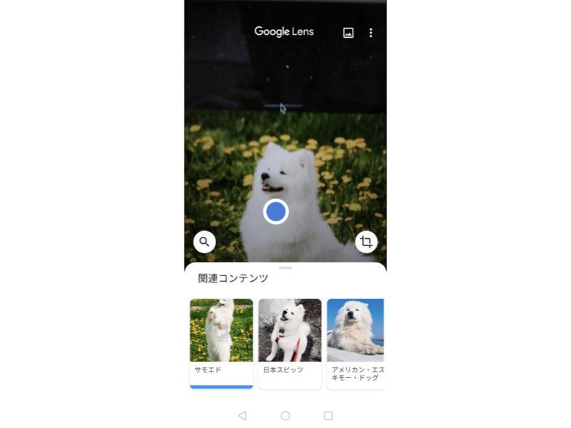 googleレンズ.002