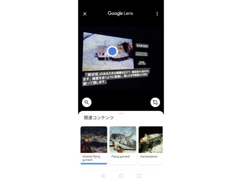 googleレンズ.004